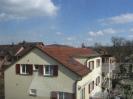 Bilder aus Winterthur und Umgebung_157